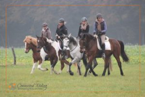 Four Connected riding students ride horses in a quadrille.
