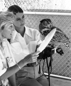 Linda Tellington Jones uses a feather to make contact with an Owl at the San Diego zoo
