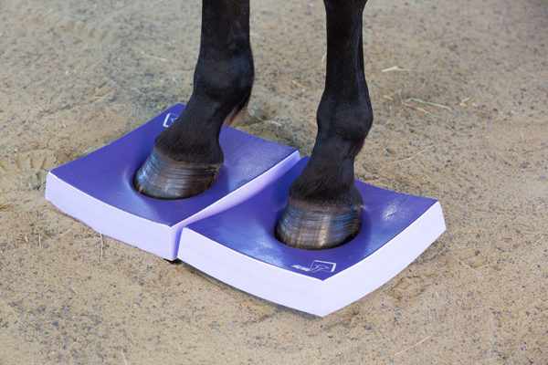 Horse stands on medium Surefoot Pad