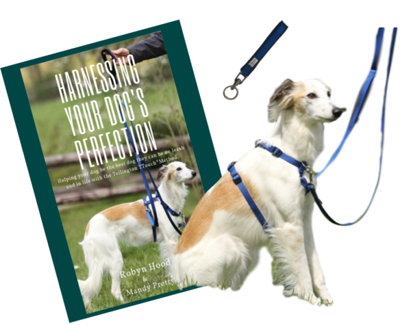 Harmony Harness Success set and book bundle